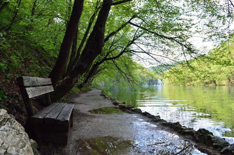 Calme de nature photo stock
