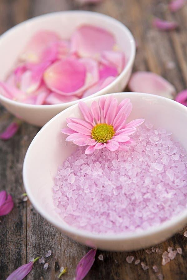 Calme rose photos stock