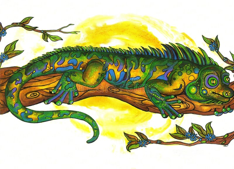 Download Calmer Chameleon stock illustration. Image of aquarium - 7351438