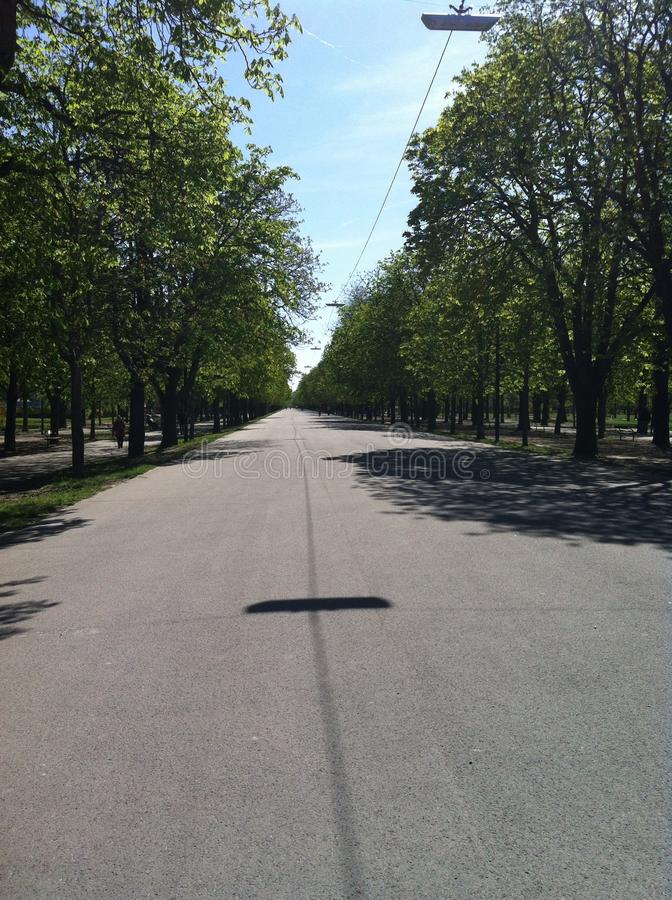 Calmy步行 免版税库存图片