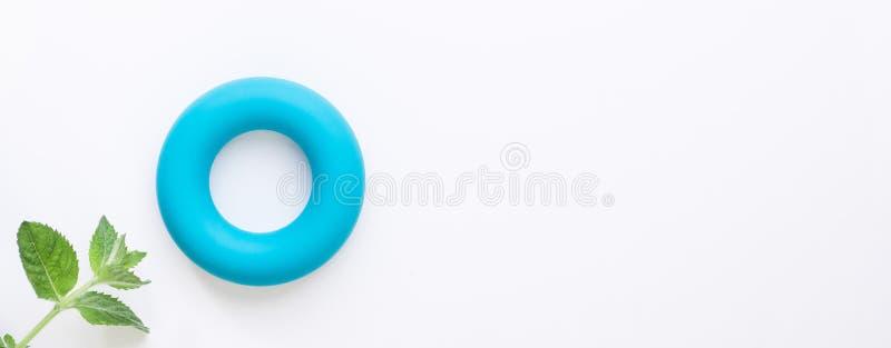 Calories zéro et fond minimalistic de rebut nul de concept Tore bleu et feuilles de menthe vertes fraîches sur le fond blanc Conf photographie stock libre de droits