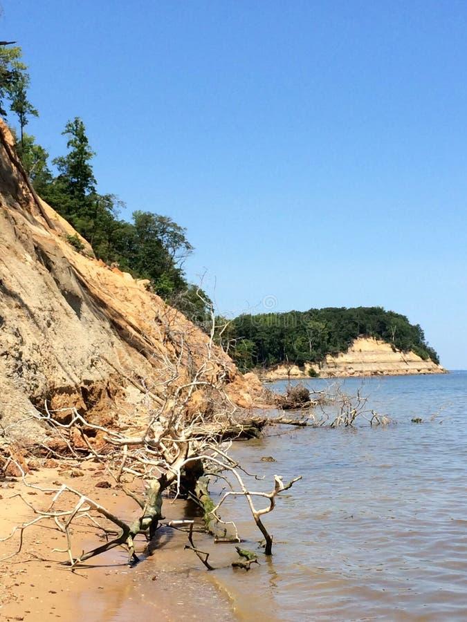Calvert Cliffs images libres de droits