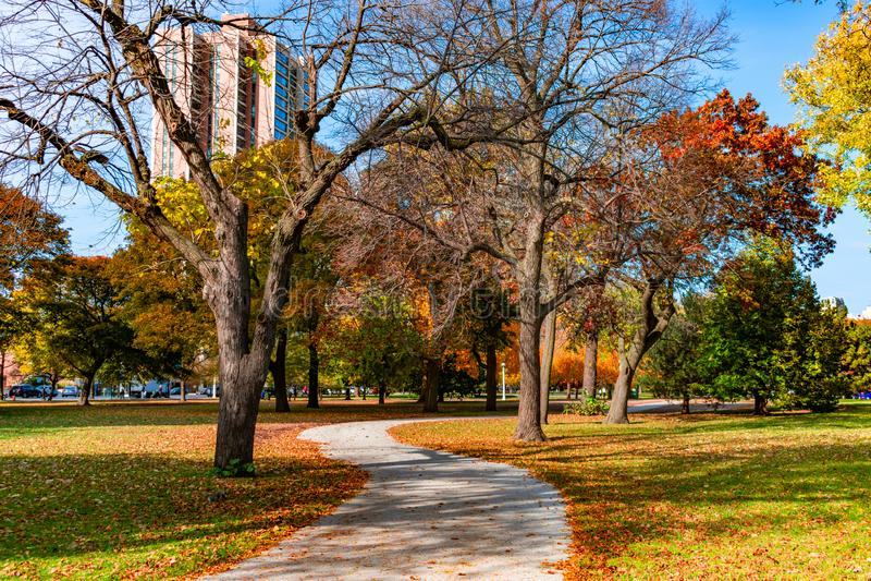 Calzada colorida con curvas en Lincoln Park Chicago durante otoño imagen de archivo