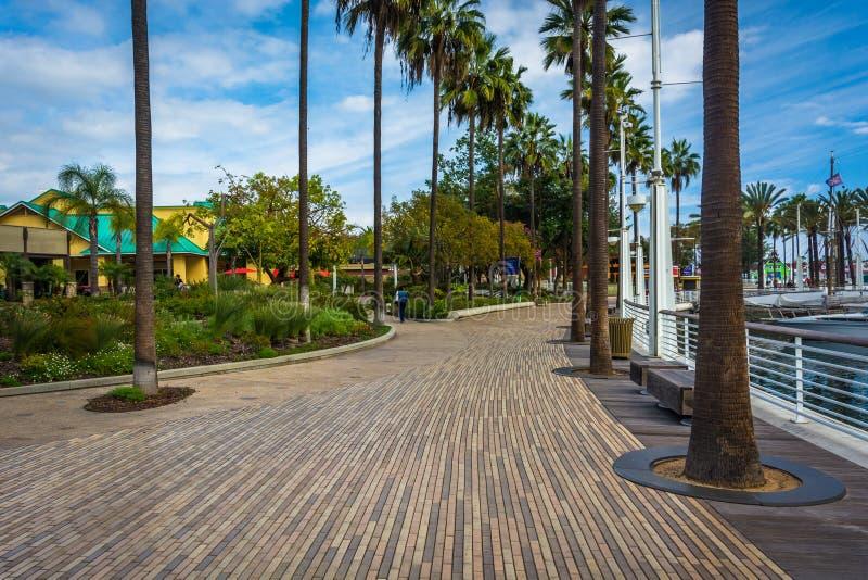 Calzada de la costa en Long Beach imágenes de archivo libres de regalías