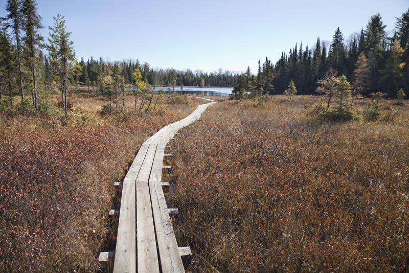 Calzada de madera que lleva al pequeño lago de la trucha en Minnesota septentrional imagenes de archivo