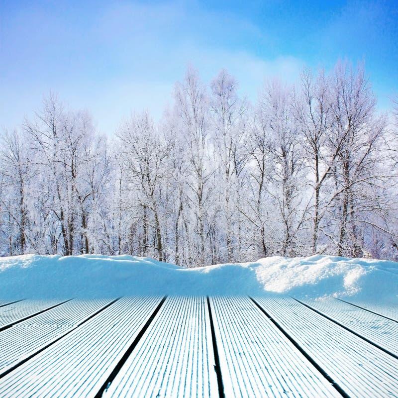 Calzada del invierno fotografía de archivo