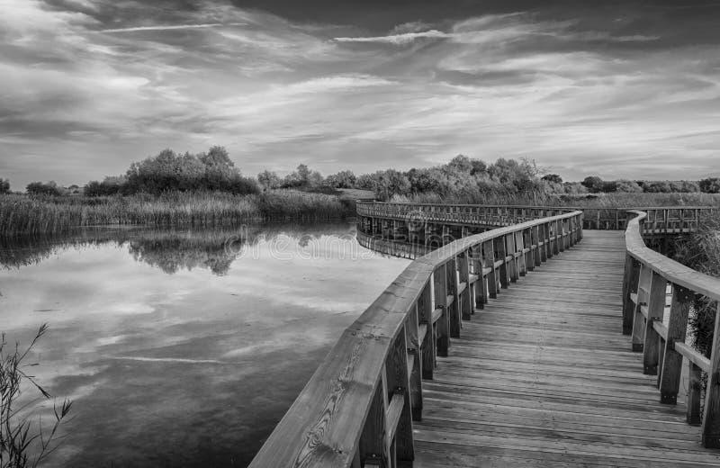 Calzada en el lago Coldwater foto de archivo libre de regalías