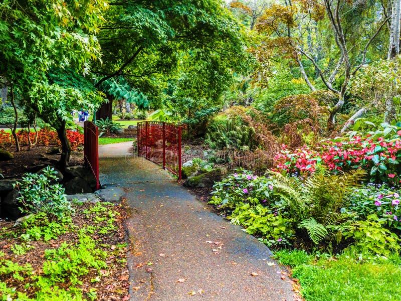 Calzada en el parque público de Beacon Hill, Victoria A.C., Canadá fotografía de archivo