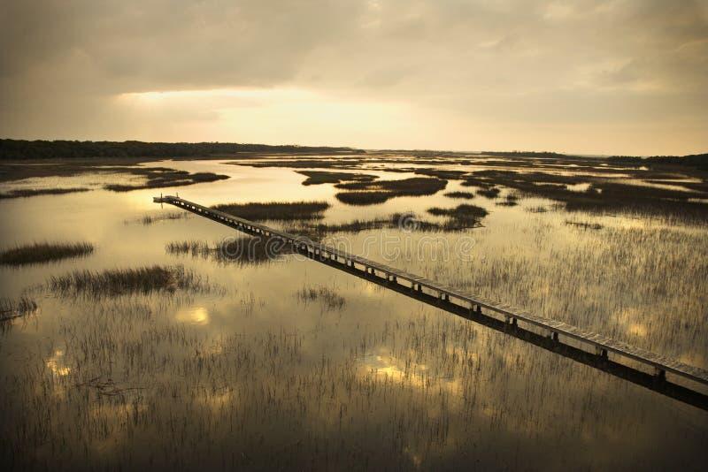 Calzada sobre pantano. imagenes de archivo