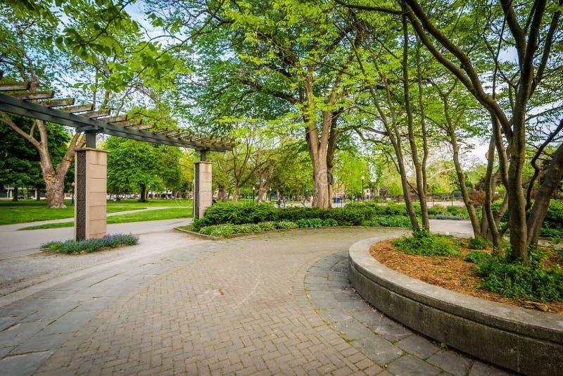 Calzada y árboles, en Allan Gardens, en el distrito del jardín, imagen de archivo