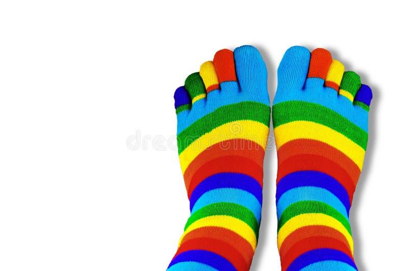 Calzini colorati con le dita isolate su bianco immagini stock libere da diritti