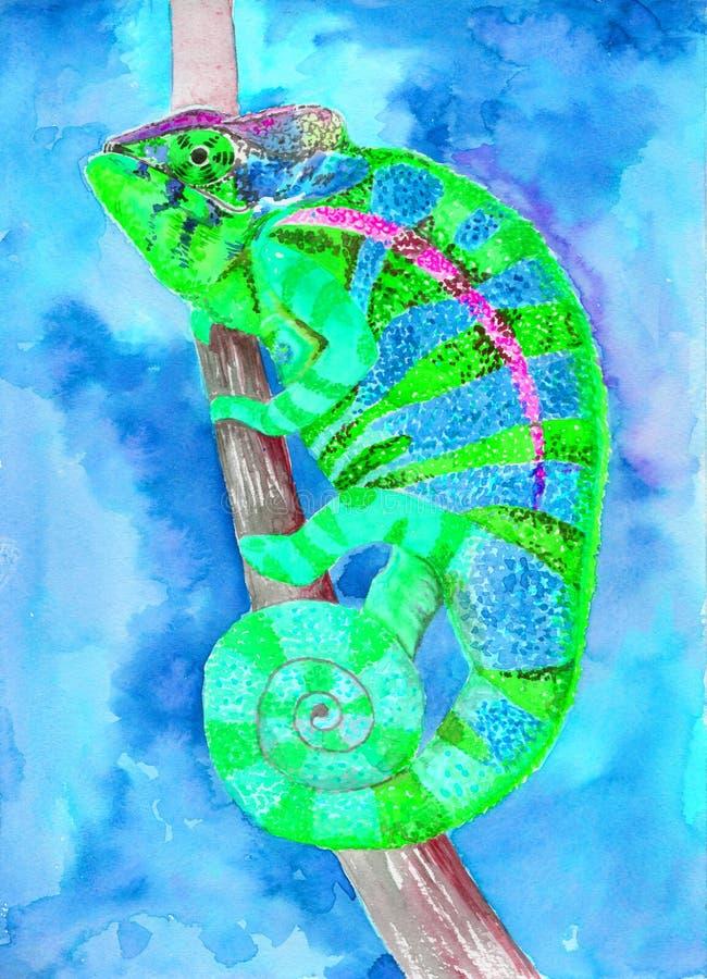 Caméléon - aquarelle de dessin Lézard multicolore Employez les matériaux imprimés, signes, articles, sites Web, cartes, affiches, illustration de vecteur