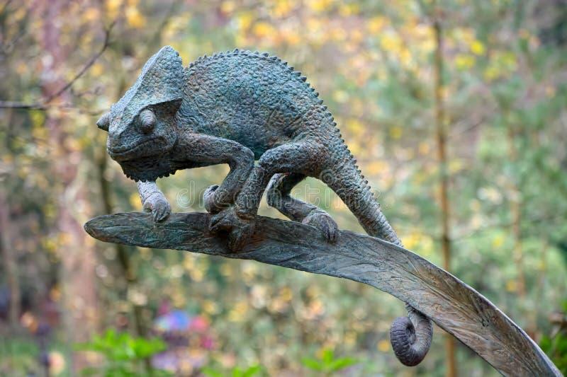 Caméléon en bronze par David Cooke photos libres de droits