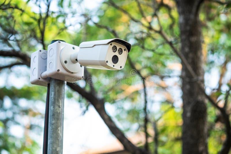 Caméra de télévision en circuit fermé sur le poteau en parc photo libre de droits