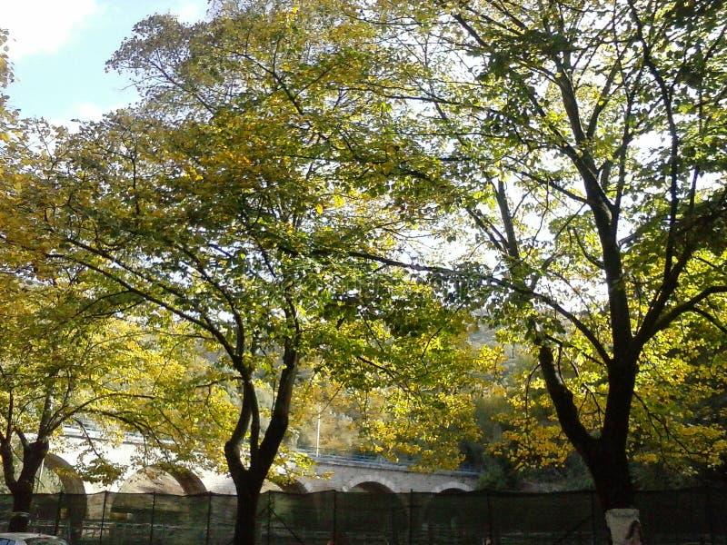 Cam05765 Free Public Domain Cc0 Image
