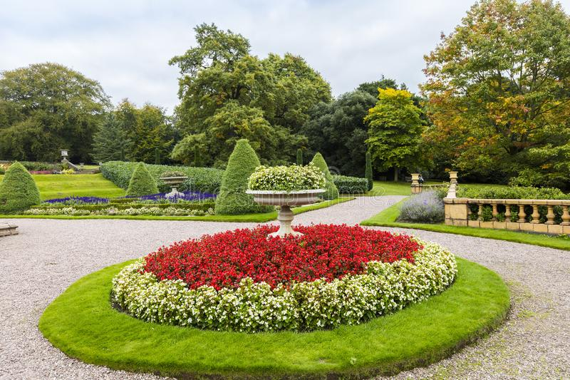 Cama de flor circular con las begonias en un jardín ajardinado imagenes de archivo