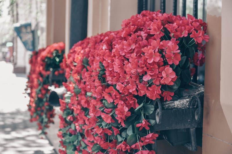 Cama de flor colgante con las flores rosadas imagenes de archivo