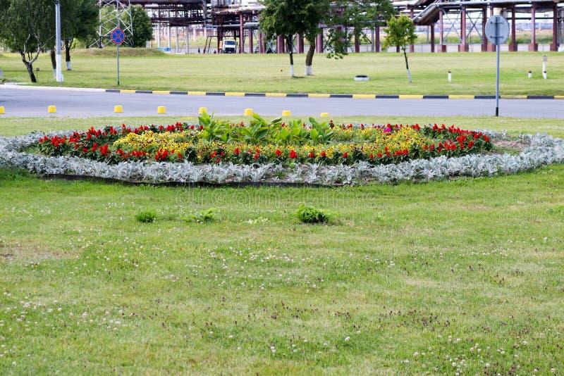 Cama de flor hermosa con las flores en la hierba cerca del camino, diseño del paisaje foto de archivo