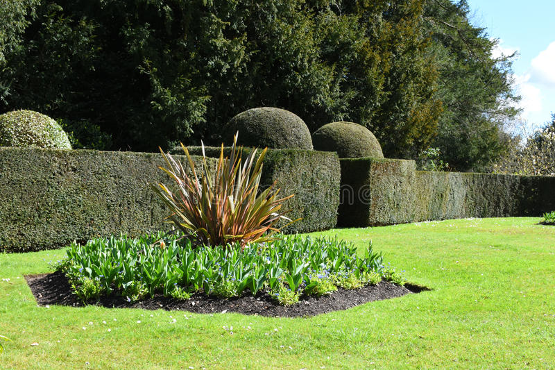 Cama de flor y Topiary, Hinton Ampner Garden, Hampshire, Inglaterra fotografía de archivo