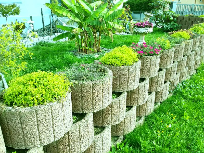 Cama de flores con plantas verdes, cobertizo, pared de plantas, opción de diseño fotos de archivo