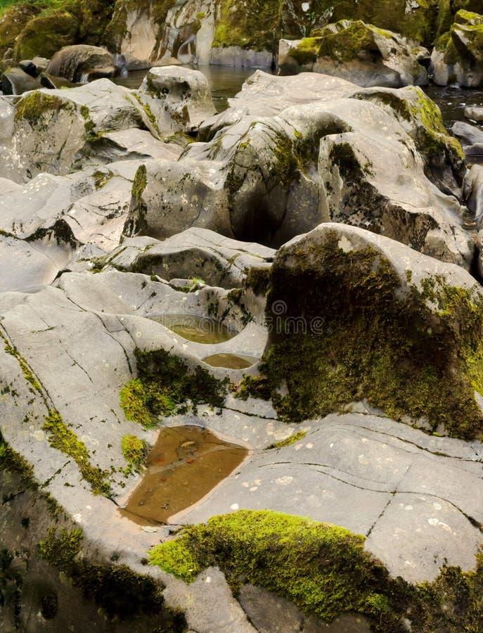 Cama de río con agua baja foto de archivo libre de regalías