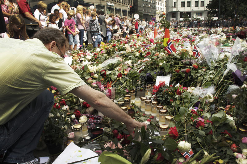 Cama de rosas con la catedral de Oslo foto de archivo libre de regalías