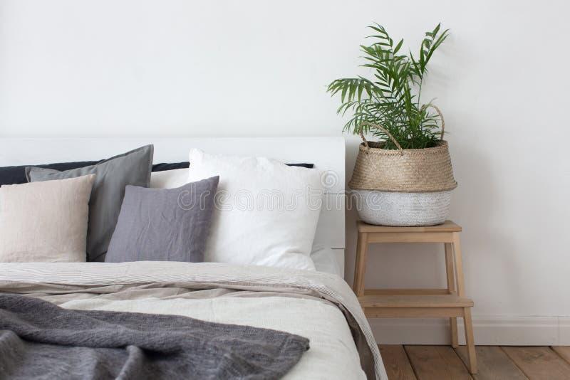 Cama y mesita de noche interiores del dormitorio con la planta fotos de archivo