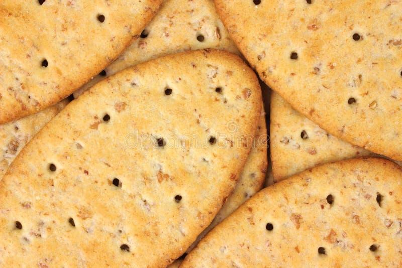 Camada de biscoitos inteiros do trigo imagens de stock