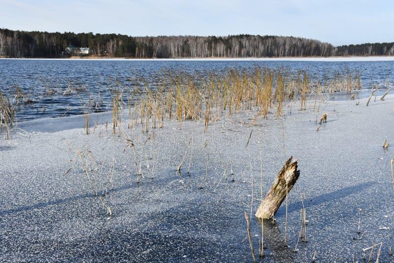Camada fina de gelo e de água aberta no lago Uvildy em novembro Região de Chelyabinsk, Rússia fotografia de stock
