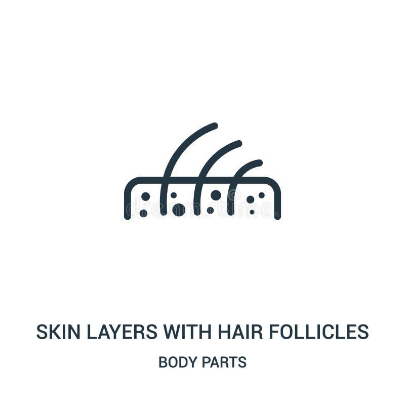 camadas da pele com vetor do ícone dos folículo de cabelo da coleção das partes do corpo Linha fina camadas da pele com ícone do  ilustração do vetor