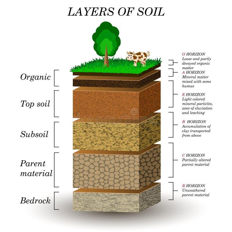 Camadas de solo, diagrama da educação Partículas, areia, húmus e pedras minerais ilustração do vetor