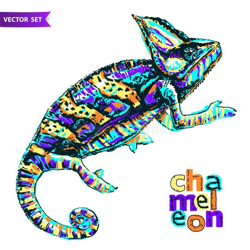 Camaleão colorido estilizado do vetor multi Entregue a ilustração tirada do vetor do réptil no estilo da garatuja para a tatuagem ilustração stock