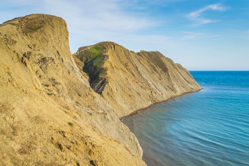 Camaleón del cabo en la Crimea imágenes de archivo libres de regalías