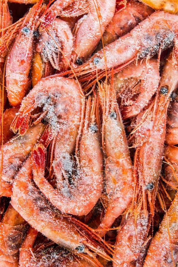 Camarão congelado empacotado fotografia de stock