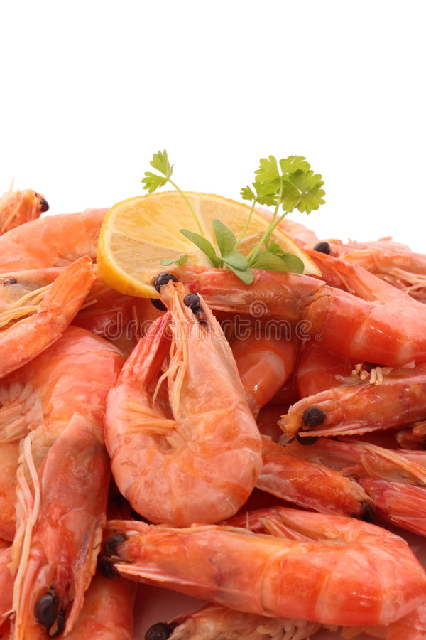 Camarão cozinhado imagens de stock royalty free