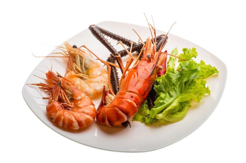 Camarão e camarões de água doce gigantes do rei imagem de stock royalty free