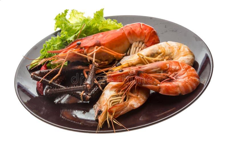 Camarão e camarões de água doce gigantes do rei foto de stock royalty free