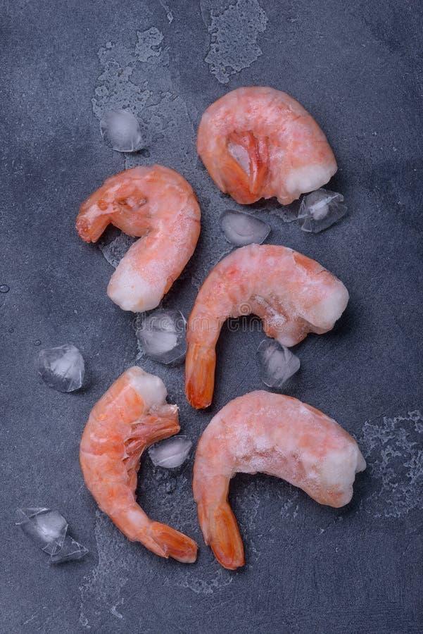 Camarão e gelo congelados do tigre foto de stock royalty free