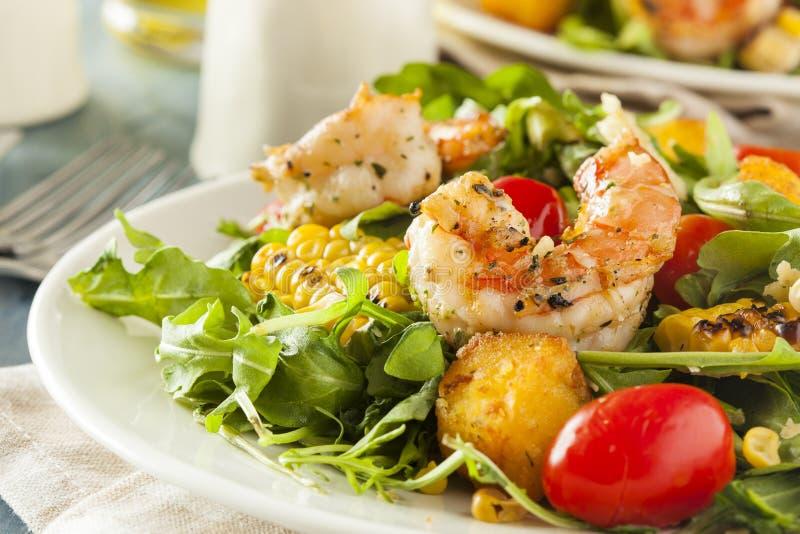 Camarão e salada saudáveis da rúcula fotos de stock royalty free