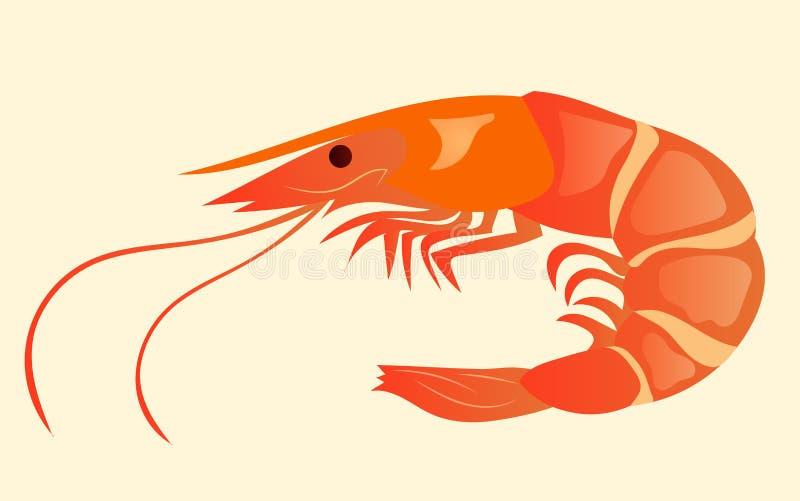 Camarón apetitoso y jugoso aislado en el fondo Comida sabrosa y sana Cocina japonesa, ejemplo ilustración del vector