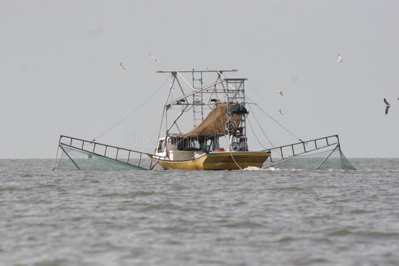 Camarón de cogida del barco que pesca con red barredera en bahía bermellona en Luisiana foto de archivo