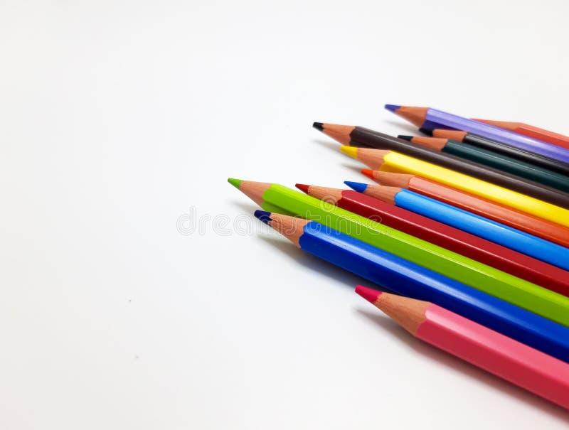 Camarões coloridos em fundo branco imagem de stock royalty free