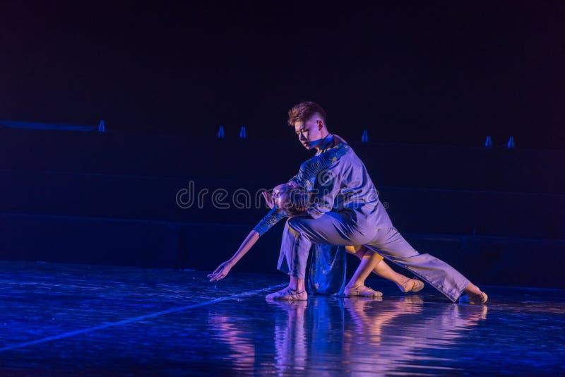 Camarade 8 d'amour--Âne de drame de danse obtenir l'eau photographie stock libre de droits
