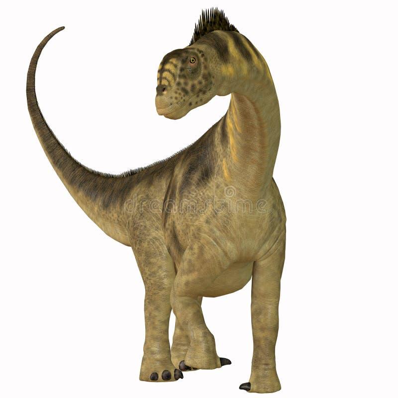 Camarasaurus na bielu royalty ilustracja