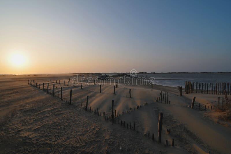 Очень сильный ветер на пляже стоковые фотографии rf