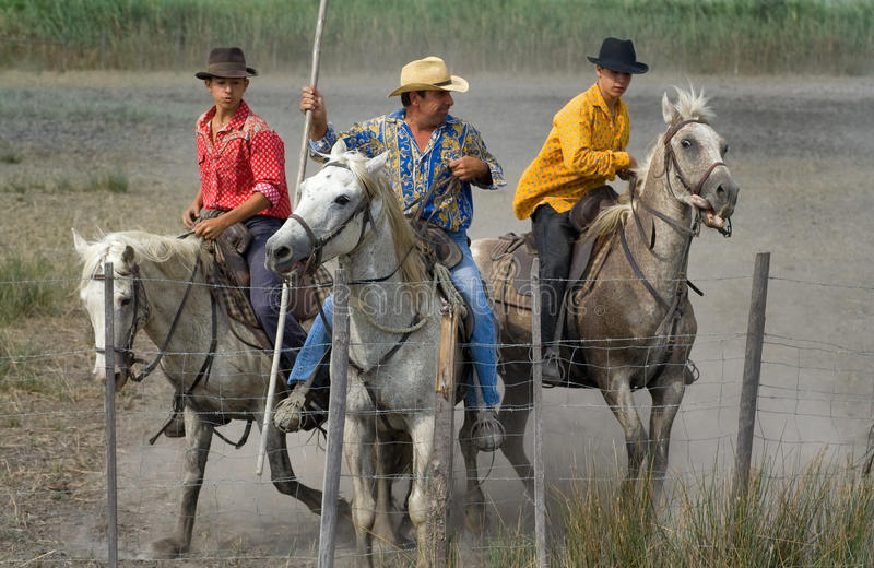 Camargue cowboys after Bull racing royalty free stock image