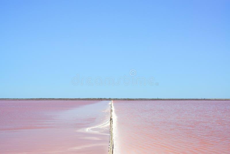 Camargue, planos cor-de-rosa de sal de Giraud. Rhone, Provence fotos de stock royalty free
