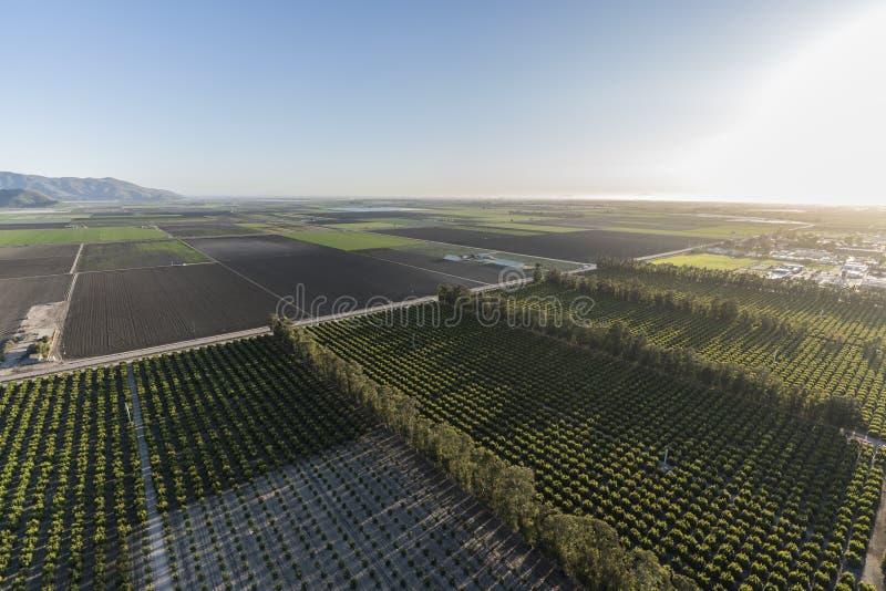 Camarillo California Farm Fields and Orchards Aerial. Aerial view of coastal farm fields and orchards near Camarillo in Ventura County, California stock photo