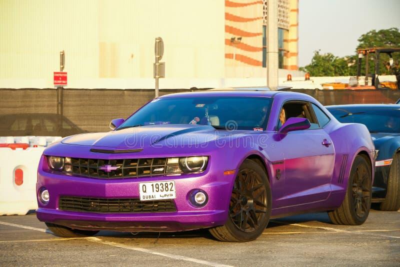 camaro Chevrolet solides solubles photo libre de droits