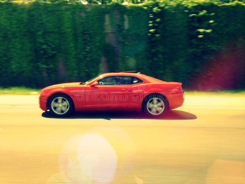 Camaro redigerar arkivbild